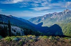 Widok od Huraganowego wzgórze śladu, Olimpijski park narodowy Zdjęcie Royalty Free