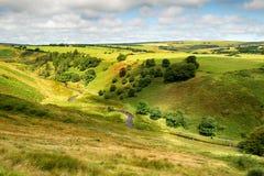 Widok Od kózki wzgórza obraz royalty free