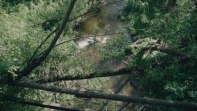 Widok od mostu mały rzeczny spływanie w wąwozie Widoczne metal części most, gałąź i mała tama, zdjęcie wideo