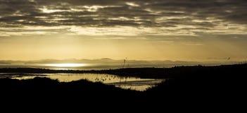 Widok od Mt Wellington wschodu słońca Fotografia Stock