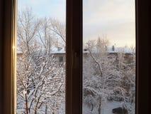 Widok od okno przy śnieżystym jardem obraz royalty free