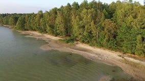 Widok od plaży blisko jeziora zbiory wideo