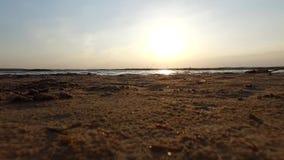 Widok od plaży blisko jeziora zdjęcie wideo