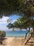 Widok od plaży lazurowy morze przez iglastych drzew Grecja Zdjęcie Stock
