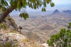 Widok od Południowego obręcza śladu w Dużym chyłu parku narodowym Zdjęcia Stock
