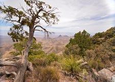 Widok od Południowego obręcza śladu w Dużym chyłu parku narodowym zdjęcia royalty free