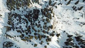 Widok od powietrza śnieżne góry z choinkami Obraz Stock