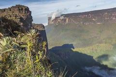 Widok od Roraima tepui na Kukenan tepui przy mgłą - Venez Obrazy Stock