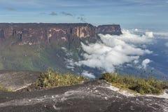Widok od Roraima tepui na Kukenan tepui przy mgłą - Venez Obraz Royalty Free