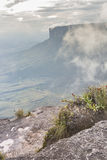 Widok od Roraima tepui na Kukenan tepui przy mgłą - Venez Zdjęcia Royalty Free