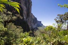 Widok od Roraima Tepui Potrójna granica, Venezu - Stołowa góra - Obrazy Stock