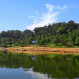 Widok od rzeki w Kerala, India zdjęcie stock