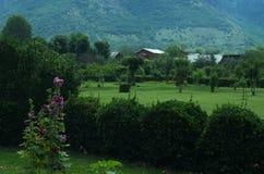 Widok od Shalimar ogródu Zdjęcie Stock