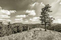 Widok od Skalnatà ¡ - Mali Carpathians, Sistani Zdjęcie Royalty Free