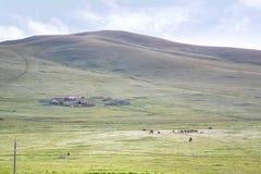 Widok od syberyjskiego pociągu przy Ulaanbaatar, Mongolia zdjęcie stock