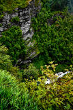Widok od szczytu góry wokoło, falezy i rzeka przy dnem Geiranger i fjord z głęboką bezdennością, Obraz Royalty Free