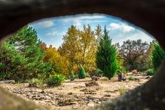 Widok ogród przez drzewa zdjęcie stock