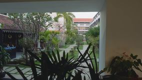 Widok ogród na terytorium hotel zdjęcie wideo