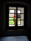 widok okno Obrazy Stock