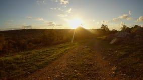 Widok oliwni wzgórza w wieczór słońcu i ogród, Cypr w zimie zbiory wideo
