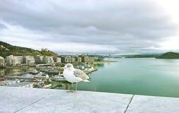 Widok Oslo i morze bałtyckie od obserwacja pokładu opera, Norwegia obrazy stock