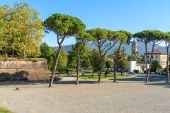 Widok outside od miasto ściany w Lucca Włochy obraz royalty free