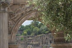 Widok palatynu wzgórza antyczne ruiny przez łuku Septimius Severus w Romańskim forum Zdjęcie Stock