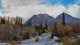 Widok pasmo górskie przez lasowego paska obraz stock