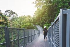 Widok patrzeje widok od niebo spaceru przy Chiangm młoda kobieta obrazy royalty free