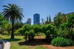 Widok Perth miasto od rzędu domu kształtującego teren uprawia ogródek Obraz Stock