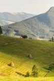 Widok piękny zachodni ukraiński teren górski w lecie przy słońcem Fotografia Stock