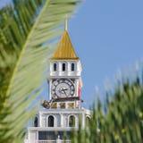 Widok piękny zegarowy wierza przez zielonej palmy opuszcza obrazy royalty free