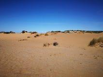 Widok piscyny Wydmowe w Sardinia, naturalna pustynia Obrazy Stock