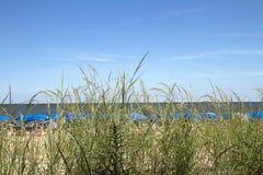 Widok plaża Przez trawy Obraz Stock