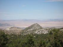 Widok pochodzi od Dużego Niedźwiadkowego jeziora Mojave pustynia zdjęcia royalty free