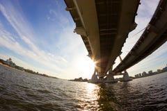 Widok pod dużym mostem obraz royalty free