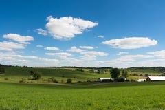 Widok pole w Illinois kraju stronie obraz stock