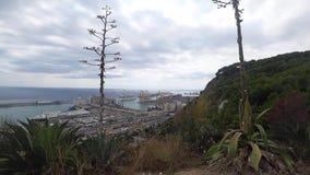 Widok port w Barcelona na słonecznym dniu zdjęcie wideo