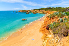 Widok Praia da Rocha plaża Obraz Royalty Free