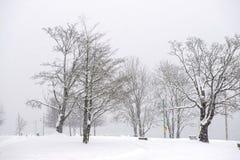 Widok przeniesienie plaży park podczas zimy burzy w Ladysmith, BC obraz royalty free
