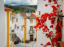 Widok przesmyk brukował ulicę w Constancia, Portugalia Zdjęcie Stock