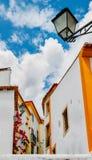 Widok przesmyk brukował ulicę w Constancia, Portugalia Obrazy Royalty Free