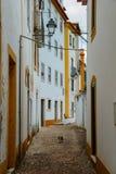 Widok przesmyk brukował ulicę w Constancia, Portugalia Obraz Stock