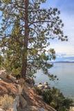 Widok Przez Jeziornego Tahoe zdjęcie royalty free