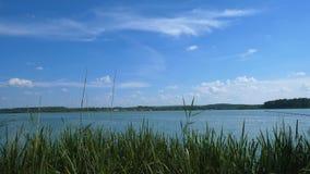 Widok przez płoch na wielkim jeziorze nad którym niebieskie niebo naturalnego krajobrazu zbiory