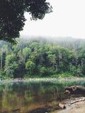 Widok przez rzekę Zdjęcia Stock