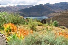 Widok przy jeziorem od ogródu Obraz Royalty Free