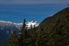 Widok przy lwów szczytami od pardwy góry Zdjęcie Stock