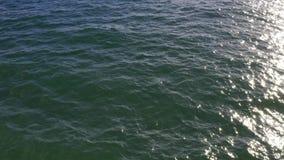 Widok przy pogodnym oceanu krajobrazem z tocznymi falami zbiory