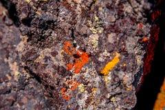 Widok punkty kolorowy czerwony liszaj na lawy skale w pustyni ląduje blisko chyłu, Oregon obraz royalty free